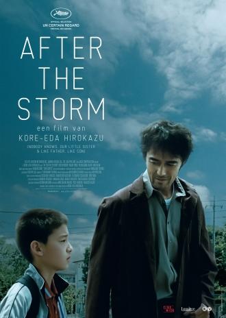 after-the-storm-a2-affiche-zonder-hr
